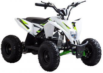 Elektrisk Mini ATV Speedbug 1000W